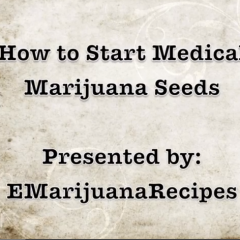 How to Start Medical Marijuana Seeds-Part 1