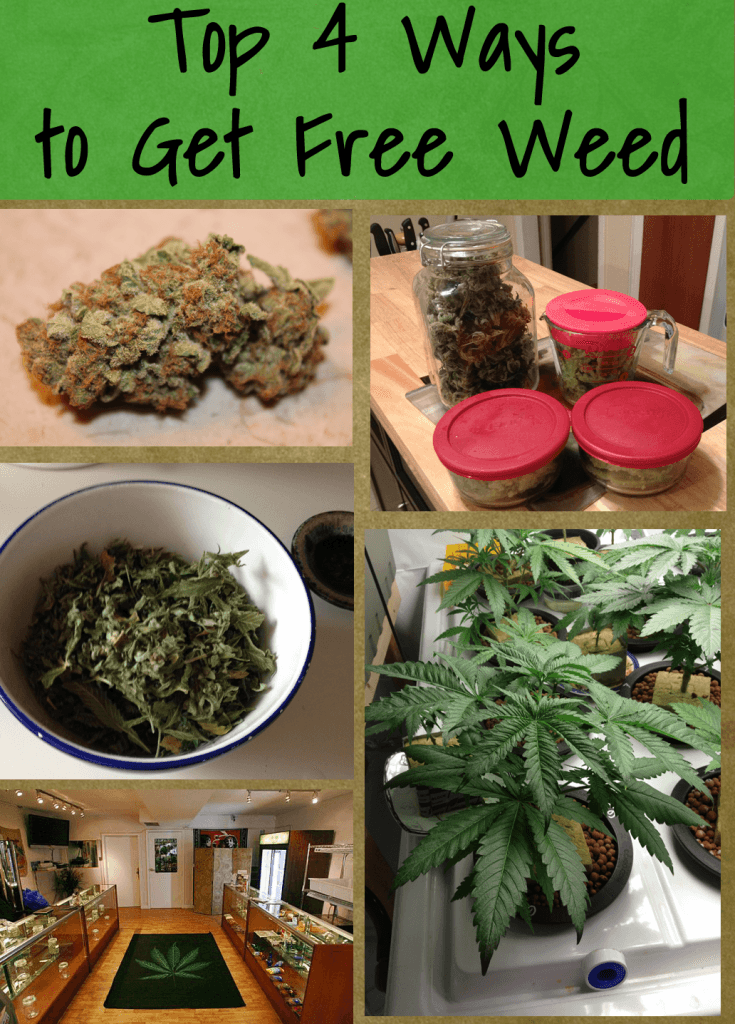Top 4 Ways to Get Free Weed