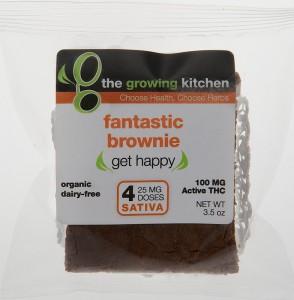 Fantastic Brownie