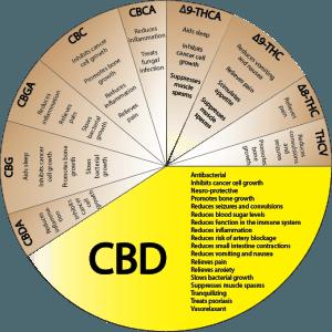 cannabinoids-CBD_zps77bed074